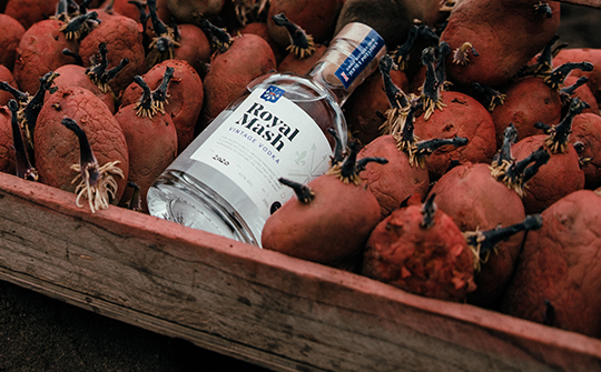 The Label Makers redesign for Royal Mash vodka